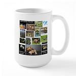 Wtd Mug Mugs