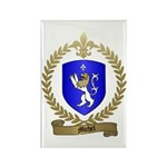 MICHEL Family Crest Rectangle Magnet (100 pack)