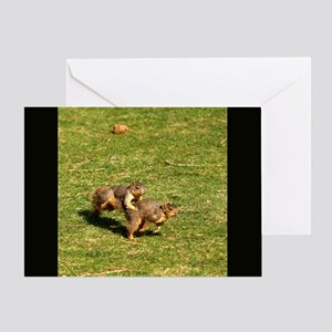 Squirrel Leapfrog Greeting Card