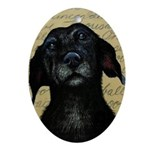 Old Labrador Oval Ornament