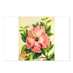 Pink Hibiscus Beautiful Painting Print Postcards (