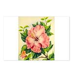 Pink Hibiscus Beautiful Painting Print Postcards (