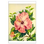 Pink Hibiscus Beautiful Painting Print Poster