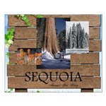 ABH Sequioa Small Poster