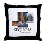 ABH Sequioa Throw Pillow