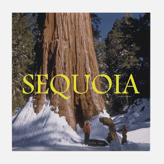 ABH Sequoia Tile Coaster