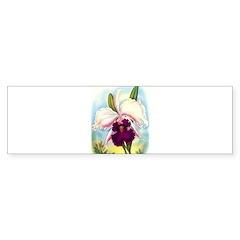 Gorgeous Orchid Vintage Painting Print Bumper Stic