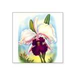 Gorgeous Orchid Vintage Painting Print Sticker