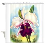 Gorgeous Orchid Vintage Painting Print Shower Curt