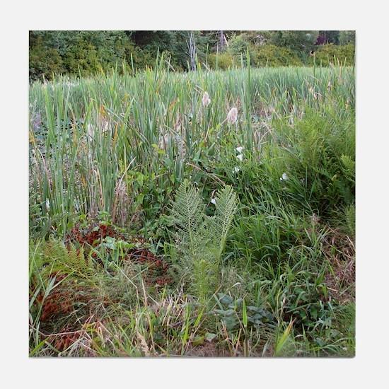 Wild Meadow In Bloom Tile Coaster