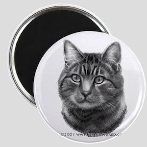 Tiger Cat Magnet