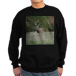 Four Point Buck Sweatshirt (dark)