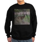 Big 4-point Buck Sweatshirt (dark)
