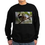 Chickadee Sweatshirt (dark)