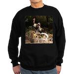 Two Turkeys on a Log Sweatshirt (dark)
