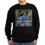 Steller's Jay on Branch Sweatshirt (dark)