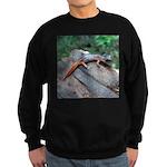 Ensatina Salamander Sweatshirt (dark)