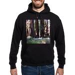The Redwood Highway Hoodie (dark)