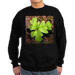 Poison Oak Sweatshirt (dark)