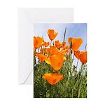 Orange California Poppies Greeting Card