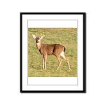 Forked Horn Buck Framed Panel Print