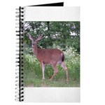 Doe in the Shade Journal