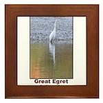 Great Egret Framed Tile