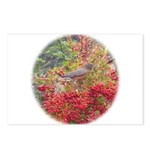 Robins Postcards (Package of 8)