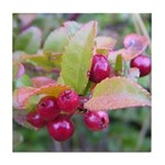 Huckleberries Tile Coaster