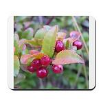 Huckleberries Mousepad