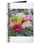 Huckleberries Journal