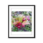Huckleberries Framed Panel Print