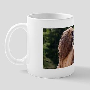 Red Tail Hawk (3) Mug