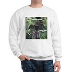 Soggy Anhinga Sweatshirt