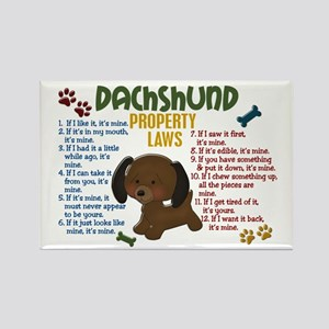 Dachshund Property Laws 4 Rectangle Magnet