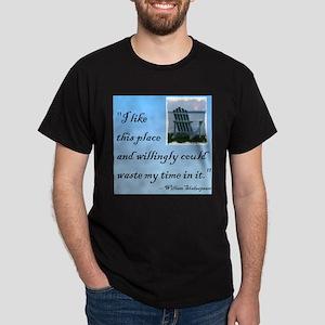 I like this place (2) Dark T-Shirt