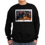 The Grand Canyon Sweatshirt (dark)
