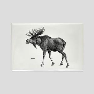 Moose Rectangle Magnet