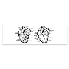 2 Hearts Bumper Sticker (50 pk)