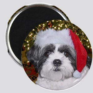 Christmas Shih Tzu Magnet