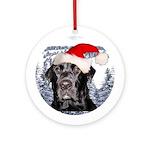 Brodie Montana Ornament (Round)
