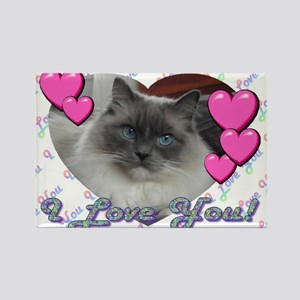 Sweet Ragdoll Cat Magnets