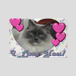 Sweet Ragdoll Cat Magnets