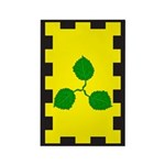 Caerthe populace Rectangle Magnet (100 pack)