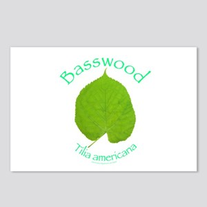 Basswood Leaf 1 Postcards (Package of 8)