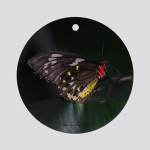 Butterfly 1 Ornament (Round)