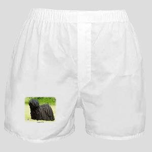 Puli 8W48D-03 Boxer Shorts