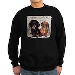 Valuable Pet Lesson #4 Sweatshirt (dark)