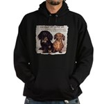 Valuable Pet Lesson #4 Hoodie (dark)