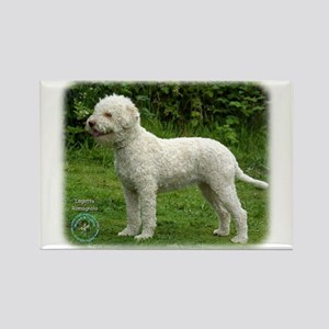 Lagotto Romagnollo 9M047D-14 Rectangle Magnet